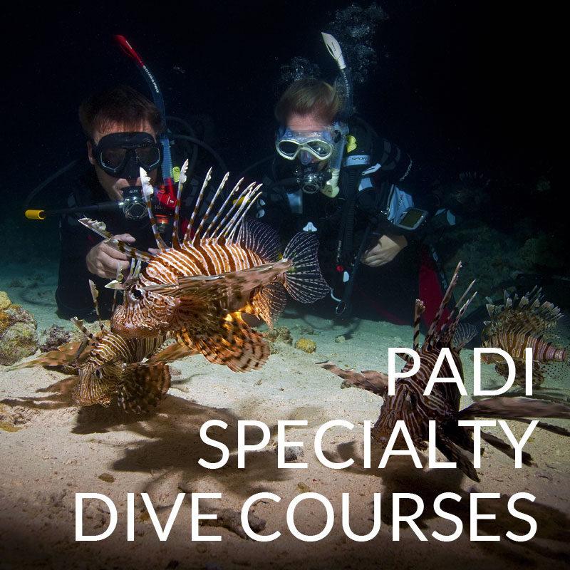 padi open water diver manual 2017